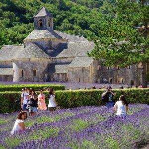 Excursion Lavande Provence