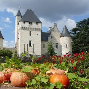 Visite Château du Rivau