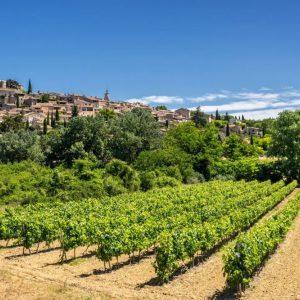Tour des vignobles du Lubéron